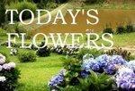 LOGOFlowers1[1].jpg