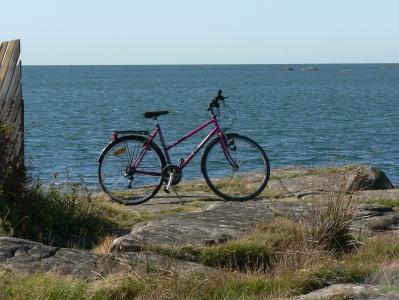bike&sea.jpg