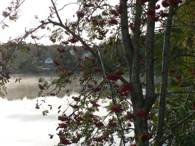 lake-catrin.jpg