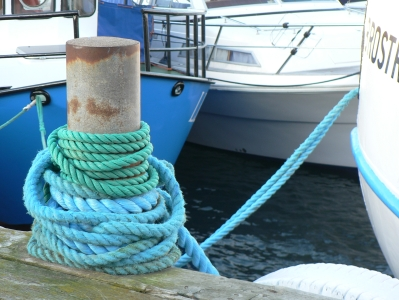 anchored.jpg