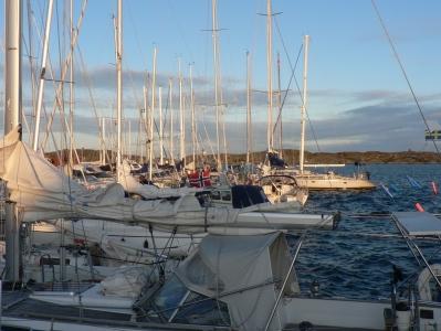 whitesailingboats.jpg