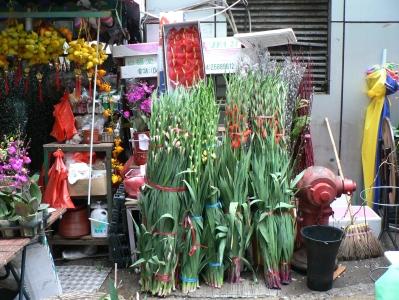 streetflowers.jpg