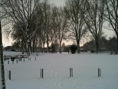 december2010.jpg