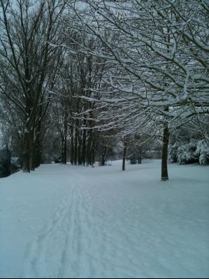 snow-péronne.jpg