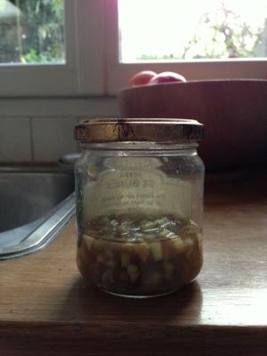 pickledcelery.JPG